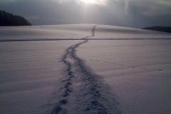 Training im Winter 2010/11